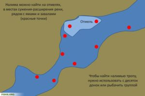 Где можно половить налима в ленинградской области