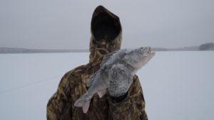 Зимняя рыбалка 35 в вологде