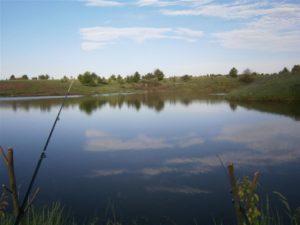 Платная рыбалка в павловском районе воронежской области