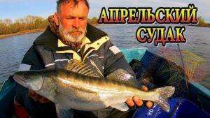 Ахтуба ловля судака на тяжелый джиг