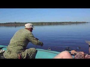 Ловля леща на реке кама