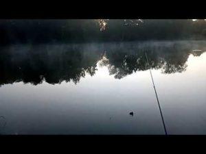 Лов на поплавок в сентябре в подмосковье