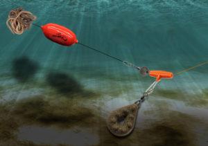 Как ловить сома на донку с лодки