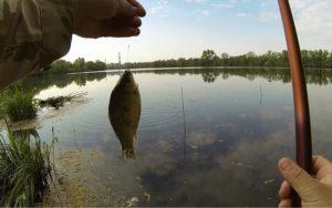 Ловля белой рыбы весной