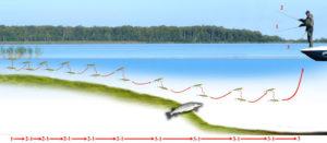 Способы проводки воблеров при ловле судака