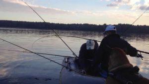 Рыбалка на удочку в ленобласти