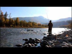 Рыбалка на хариуса в сентябре на алтае
