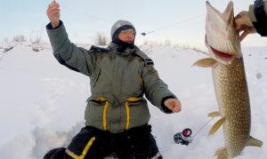 Рыбалка в самаре сегодня где клюет