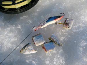 Оснастки для зимней ловли судака