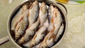 Можно ли солить размороженную речную рыбу