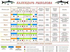 Какая рыба клюет в ноябре в беларуси