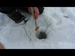 Ловля косынками зимой с прикормкой видео