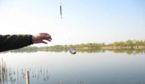 Рыбалка на волге возле дубны