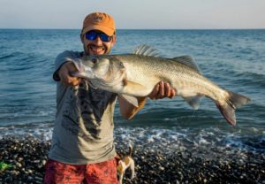 Рыба лаврак сканворд 5