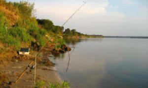 Ловля донкой на реке