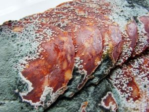 Причины гниения мяса рыбы