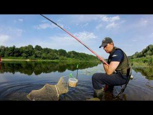Видео ловля маховой удочкой леща