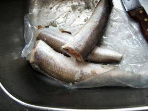 Дефростированная рыба что