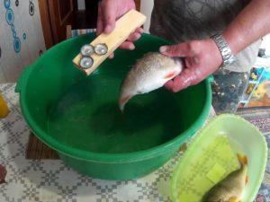 Как чистить свежую рыбу от чешуи видео