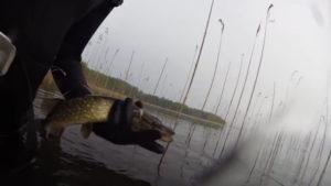 Охота на щуку с ружьем весной видео