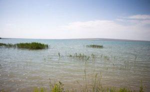 Грушевское водохранилище ставропольский край рыбалка
