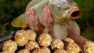 Прикорм для белой рыбы своими руками видео