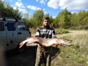 Щука победила рыбака
