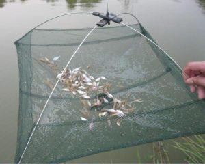 Как называется сетка для ловли рыбы