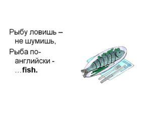 Транскрипция к слову рыба на английском