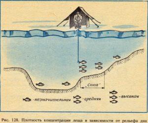 Где искать леща на водохранилище
