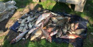 Как ловить рыбу на кубани в краснодаре