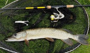 Рыбалка на щуку в мае видео