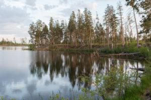 Рыбалка озеро кщара