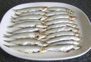 Как называется рыба похожая на кильку