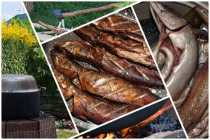 Можно ли разогревать рыбу горячего копчения