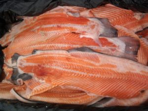 Хребет рыбы фото