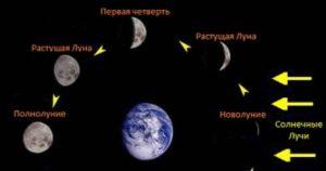 Клев леща и фазы луны