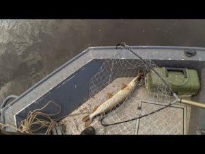 Рыбалка на чусовском озере 2017