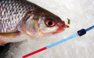 Рыбалка на мормышку зимой без насадки видео