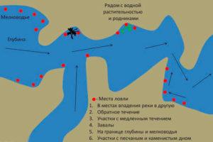 Как выбрать место для рыбалки на водохранилище