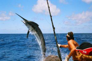 Рыбалка в море на огромных рыб