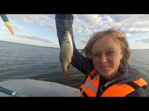 Рыбалка на варваровском водохранилище волгоград