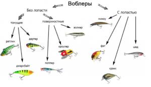 Основные термины рыбалки