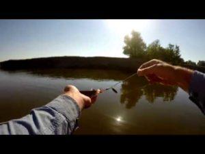 Ловля чехони в астрахани видео