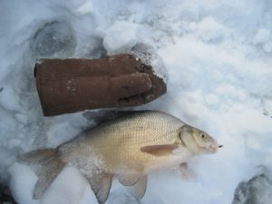 Зимняя рыбалка видео на мормышку на леща