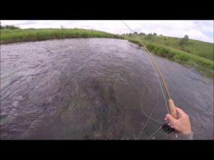 Нахлыст на малых реках