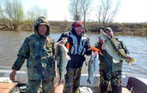 Ловля рыбы весной на ахтубе видео