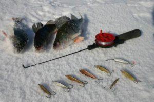 Самая уловистая снасть для зимней рыбалки