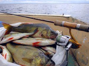 Рыбалка на ладоге в сентябре