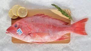 Рыба снеппер как приготовить